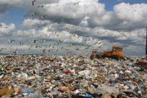 Токсичные отходы и наносимый ими вред