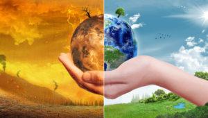 Основные экологические проблемы. Часть 2