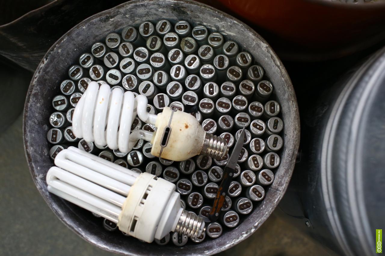 Переработка лампочек: почему так важно их утилизировать